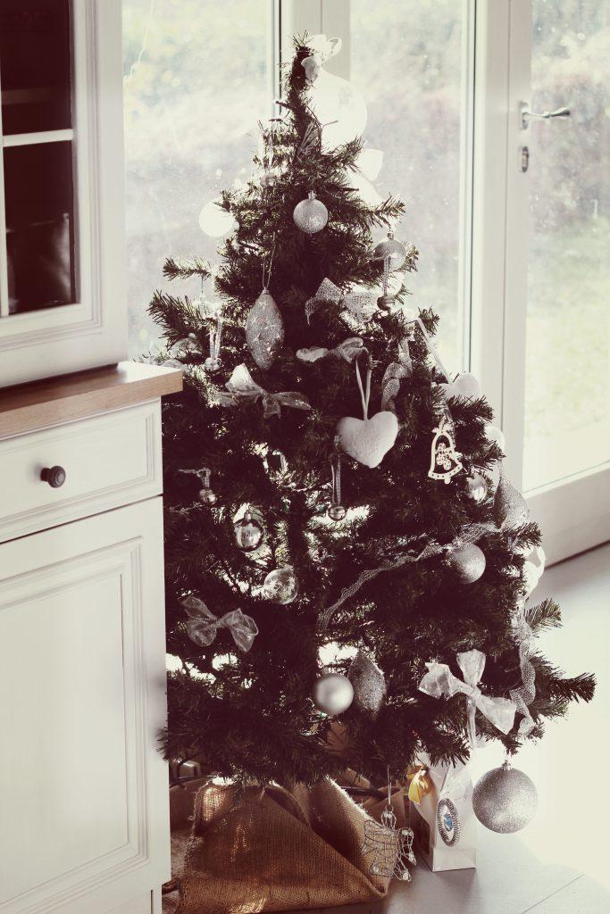 albero_langhe