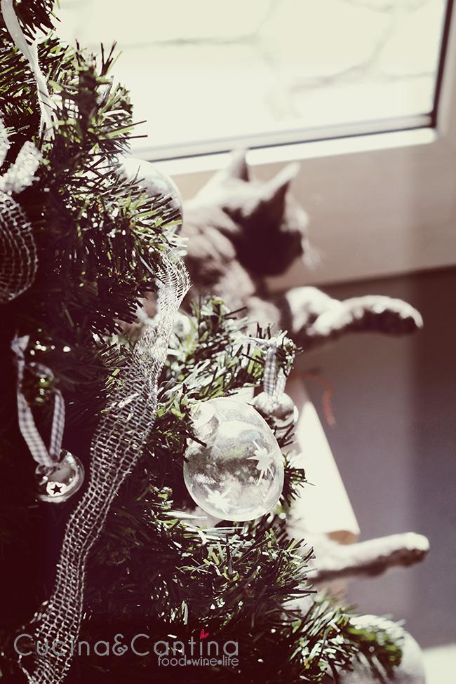 gatto_albero_pisolino