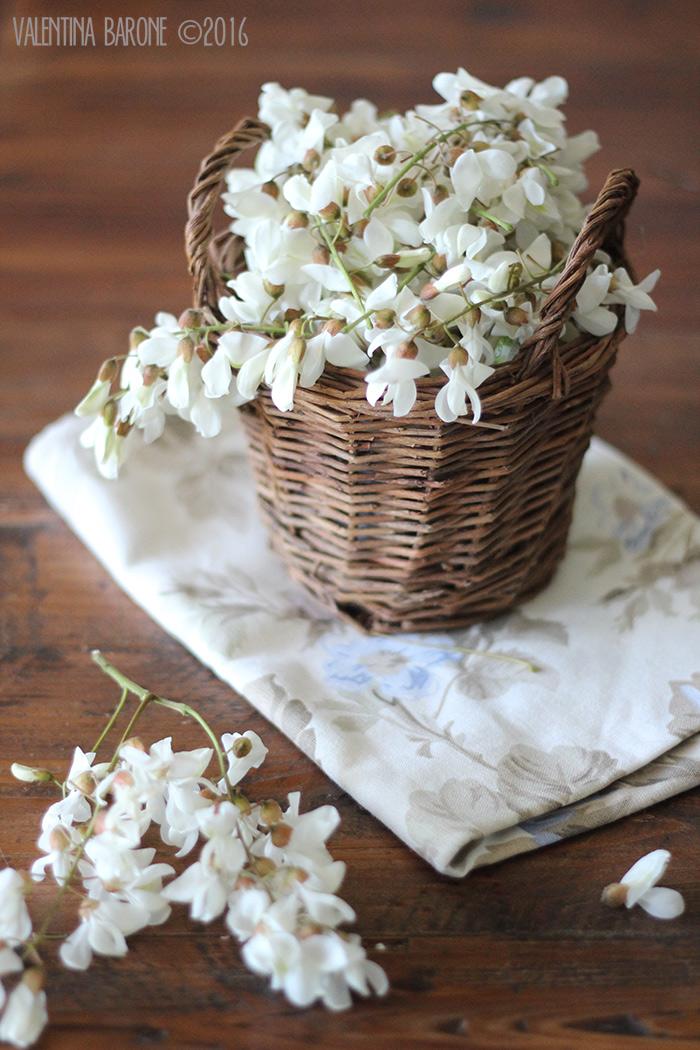 fiori_di_acacia