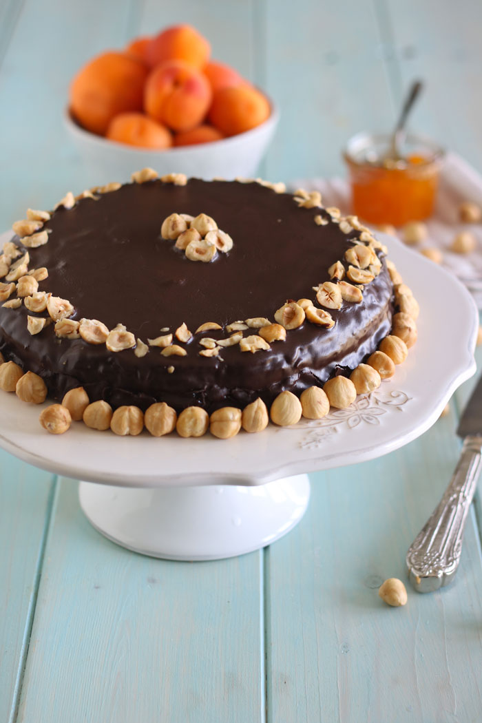 torta_gianduia
