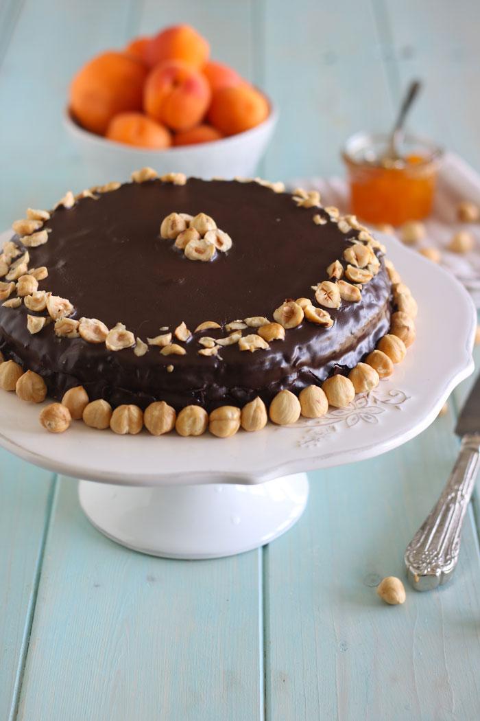 torta_gianduia